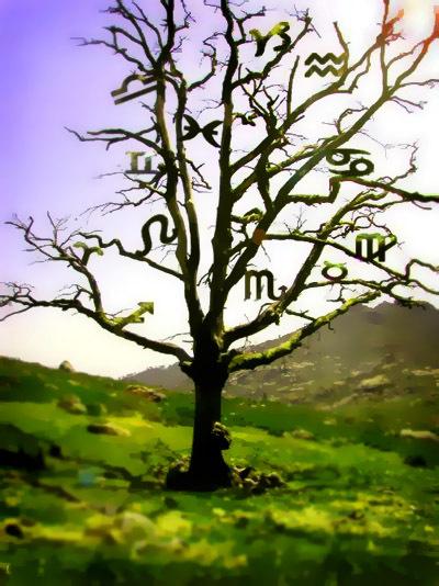 Zodiac Tree