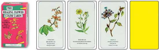 The Healing Flower Color Cards by Ingrid Kraaz