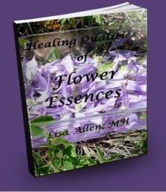 HealingQualitiesofFlowerEssences3Dlilac